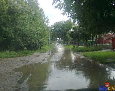 Nova Mocvara - Save Kovacevica ulica